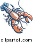 Vector of a Lobster: Faded Blue, White, and Red Color by Zooco