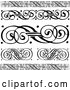 Vector of Black and White Swirl Borders and Rules by BestVector