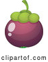 Vector of Cartoon Mangosteen by Graphics RF