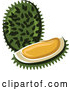 Vector of Durian Fruit Beside a Wedge by Vector Tradition SM