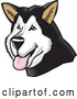 Vector of Friendly Alaskan Malamute Dog Hanging His Tongue out by David Rey