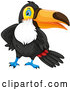 Vector of Toucan Bird by Graphics RF