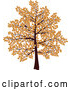 Vector of Tree with Branches Covered in Brown Autumn Leaves, over a White Background by KJ Pargeter