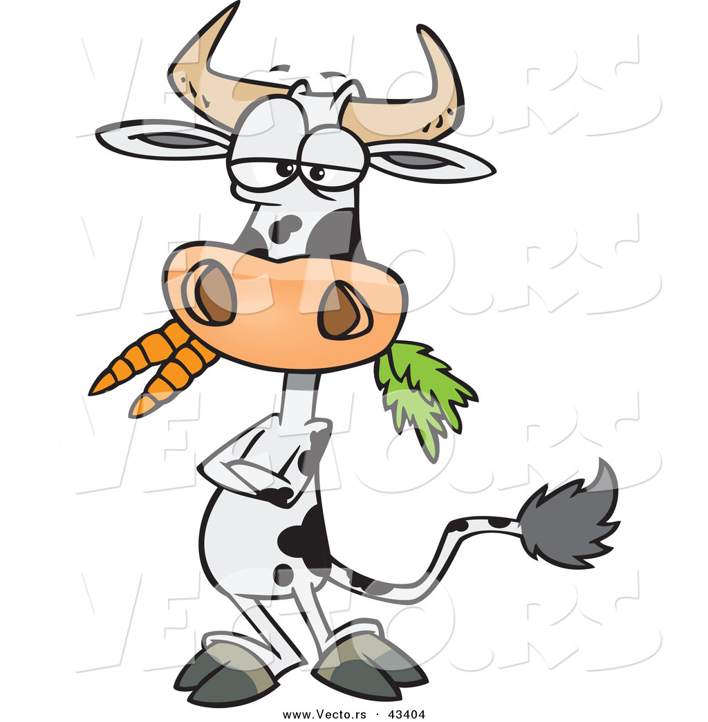 vector of a cartoon cow eating carrots while standing with his