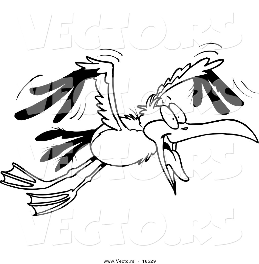seagull birds printable coloring page for kids seagull birds