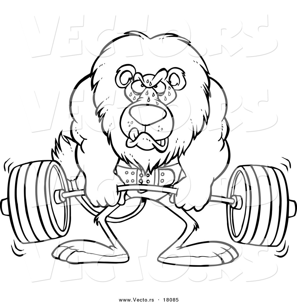 vector of a cartoon lion weightlifting outlined coloring page by