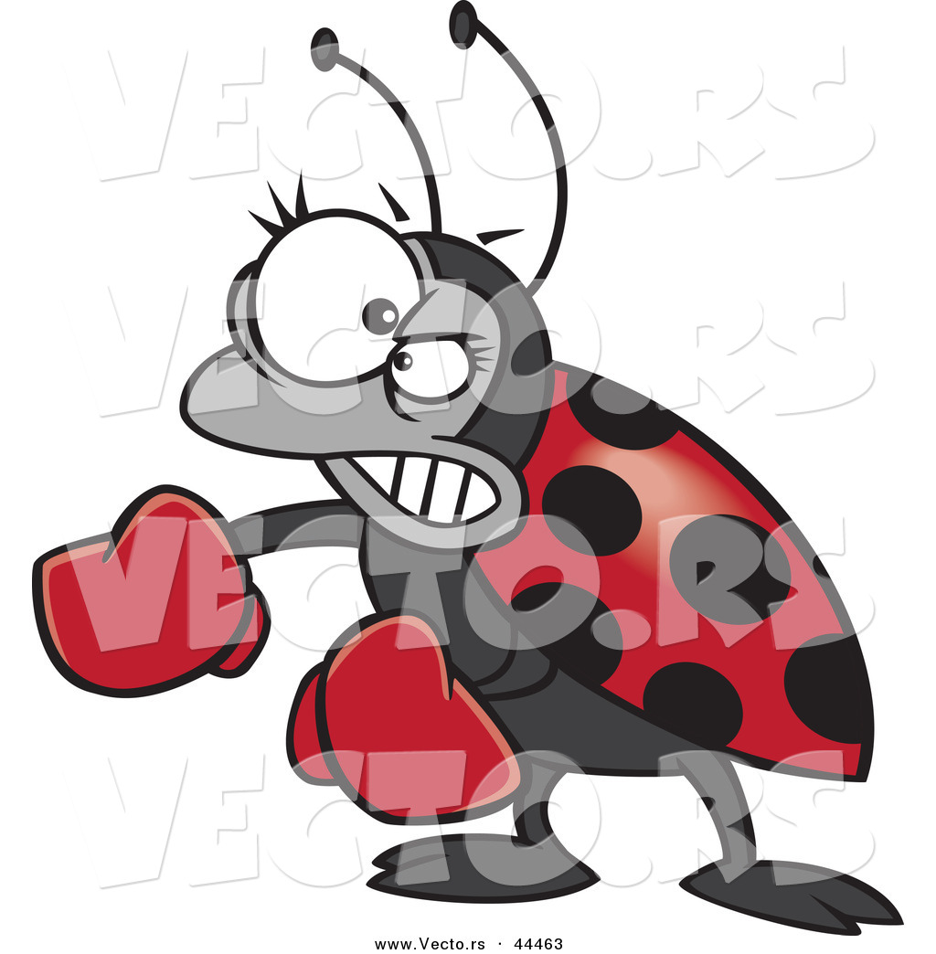 A Cartoon Ladybug vector of a mad cartoon ladybug wearing boxing gloves