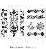 Vector of 8 Unique Floral Edges and Borders - Decorative Web Design Elements by BestVector