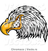 Vector of a Cartoon Bald Eagle Mascot Grinning by Chromaco