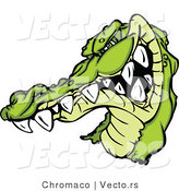 Vector of a Combative Cartoon Alligator Mascot Grinning Staring with Intimidating Eyes by Chromaco