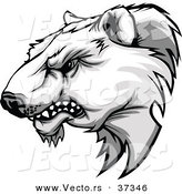 Vector of a Competitive Cartoon Polar Bear Mascot Growling by Chromaco