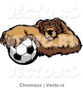Vector of a Competitive Soccer Bear Mascot Gripping Ball with Paw by Chromaco