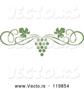 Vector of an Olive Green Grape Vine and Swirl Page Border by Vector Tradition SM