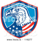 Vector of Bald Eagle American Flag in a Shield by Patrimonio