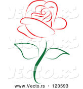 Vector of Beautiful Single Red Rose 1 by Vitmary Rodriguez
