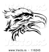 Vector of Black and White Eagle Head in Profile by AtStockIllustration