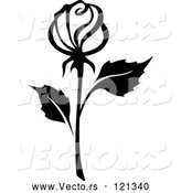 Vector of Black and White Rose Flower 15 by Vector Tradition SM