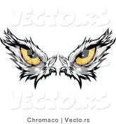 Vector of Intimidating Eyes of a Dominant American Bald Eagle by Chromaco