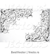 Vector of Ornate Leafy Floral Vines Corner Borders - Black and White by BestVector