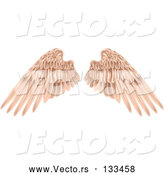 Vector of Pink Brown Angel Wings by AtStockIllustration