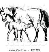 Vector of Retro Vintage Black and White Mare Horse and Colt by Prawny Vintage