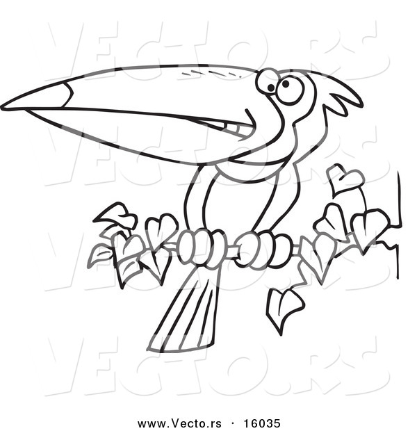 Vector of a Cartoon Exotic Toucan Perched on a Branch Outlined