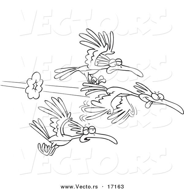 Vector Of A Cartoon Group Fast Birds