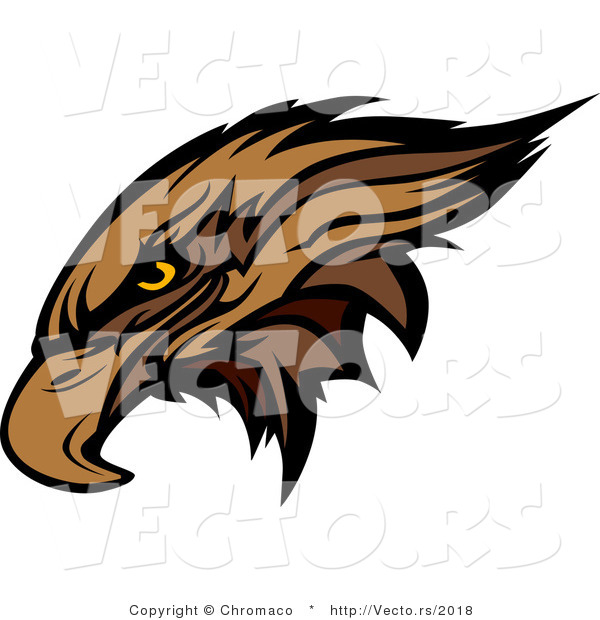 Vector of a Golden Eagle Head