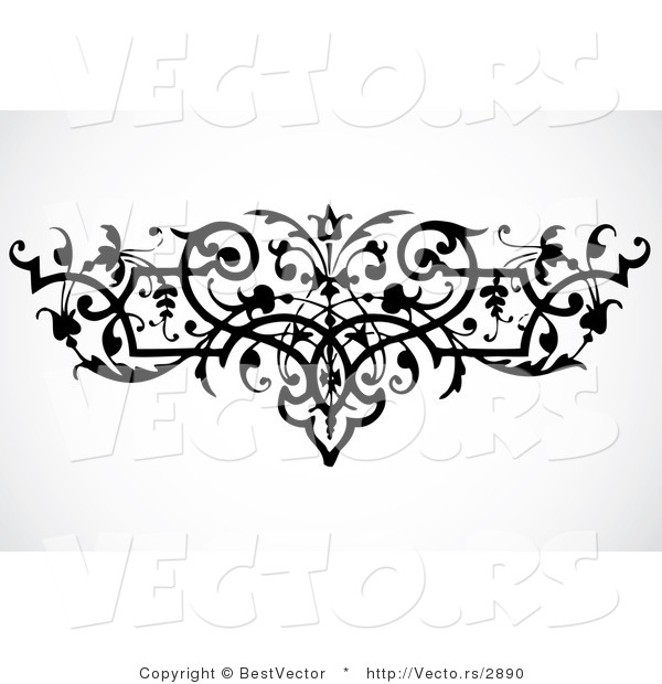 Vector Of Elegant Vines Border Design Element Black And White .