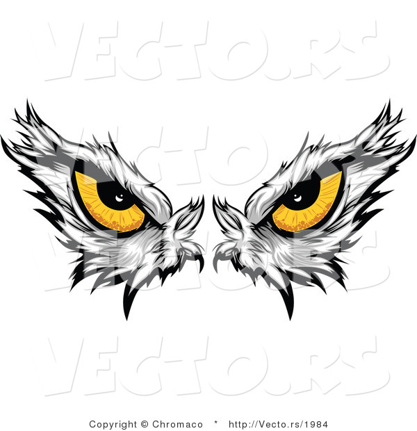 Vector of Intimidating Eyes of a Dominant American Bald Eagle