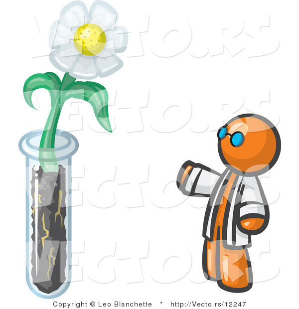 Vector of Orange Guy Scientist by a Giant White Daisy Flower in a Test Tube
