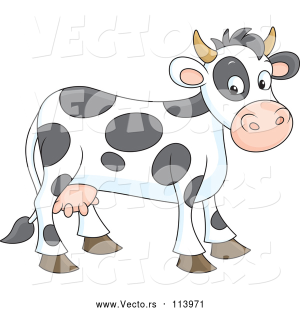 Vector of Spotted Cow