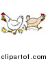 Cartoon Vector of a Rooster, Chicken, and Chicks Running Around by LaffToon